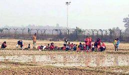 কসবা সীমান্তে ১২ জনকে পুশইনের চেষ্টা বিএসএফের